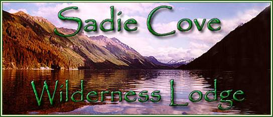 Sadie Cove Wilderness Lodge honeymoons in Kachemak Bay